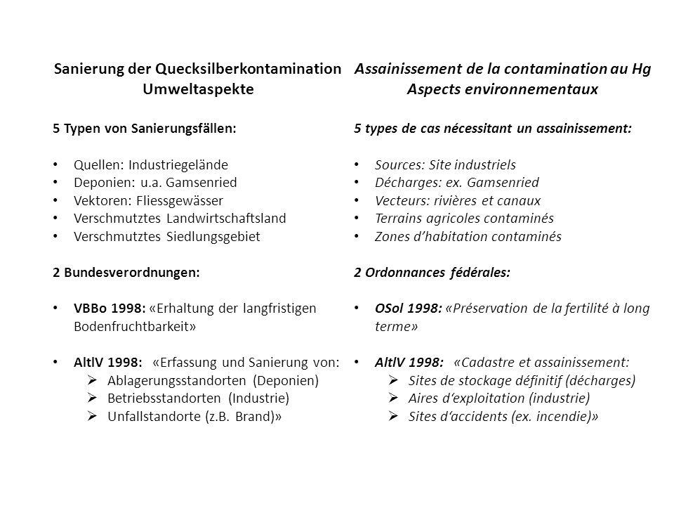Sanierung der Quecksilberkontamination Umweltaspekte 5 Typen von Sanierungsfällen: Quellen: Industriegelände Deponien: u.a.