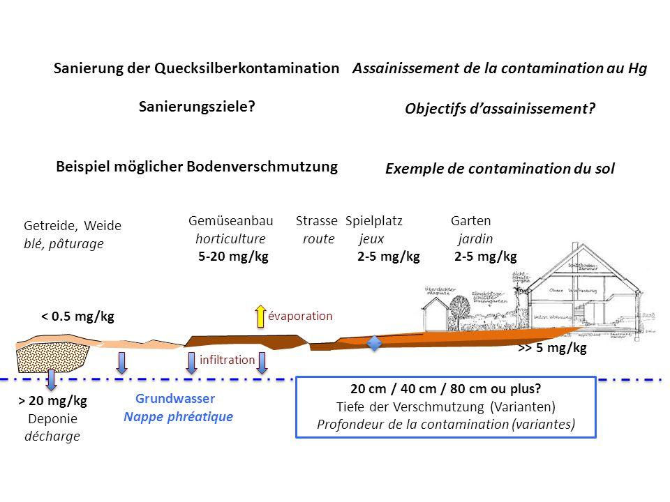 Sanierung der Quecksilberkontamination Sanierungsziele.