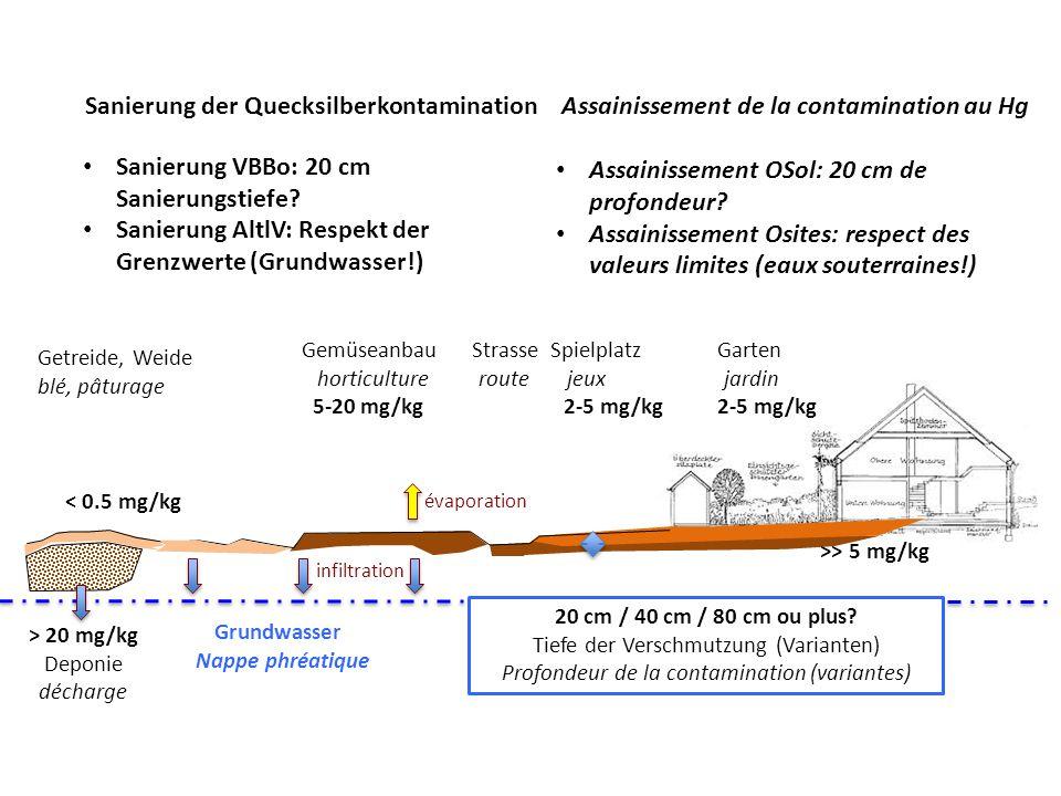 Sanierung der Quecksilberkontamination Sanierung VBBo: 20 cm Sanierungstiefe.