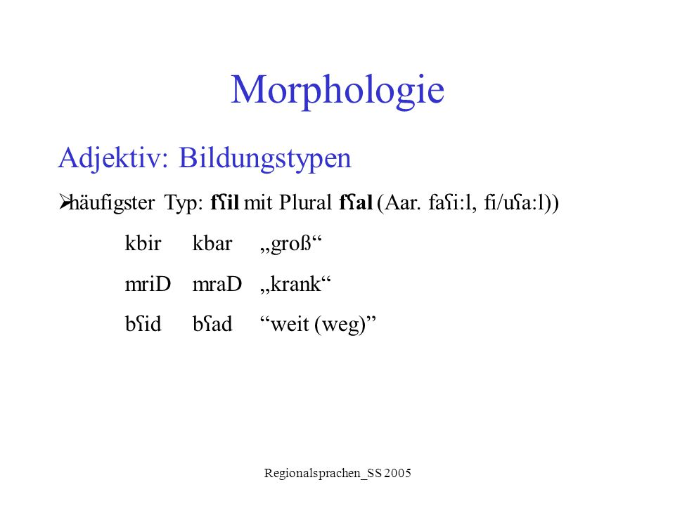 """Regionalsprachen_SS 2005 Morphologie Adjektiv: Bildungstypen  häufigster Typ: f ʕ il mit Plural f ʕ al (Aar. fa ʕ i:l, fi/u ʕ a:l)) kbirkbar """"groß"""" m"""