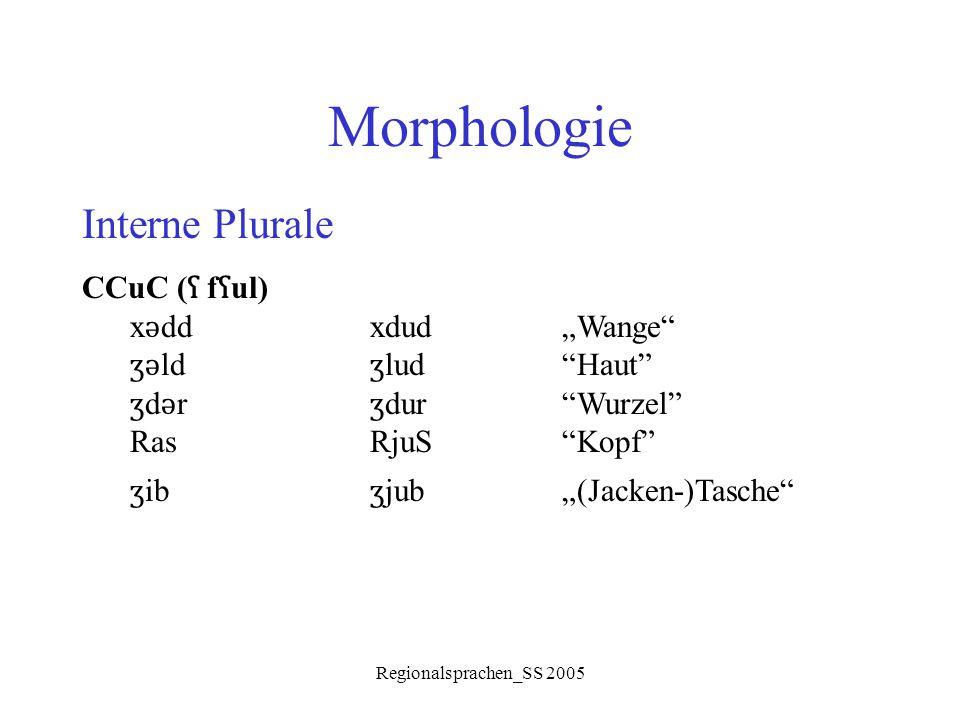 "Regionalsprachen_SS 2005 Morphologie Interne Plurale CCuC ( ʕ f ʕ ul) x ǝ ddxdud""Wange"" ʒǝ ld ʒ lud""Haut"" ʒ d ǝ r ʒ dur""Wurzel"" RasRjuS""Kopf"" ʒ ib ʒ j"