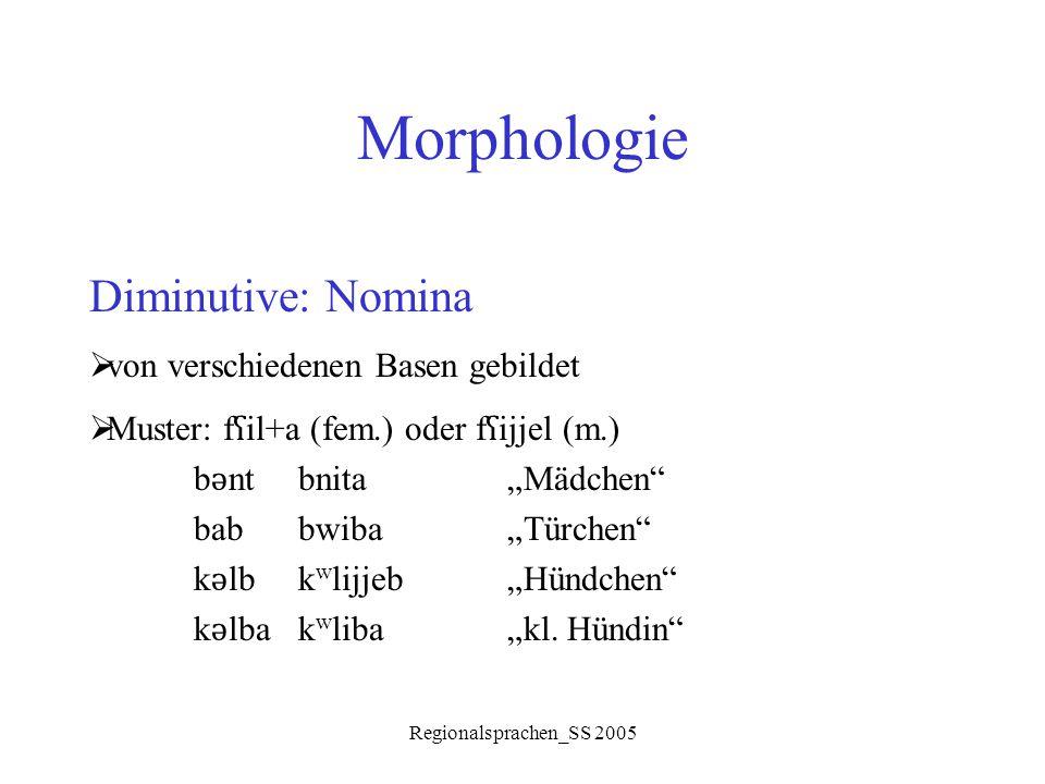 """Regionalsprachen_SS 2005 Morphologie Diminutive: Nomina  von verschiedenen Basen gebildet  Muster: f ʕ il+a (fem.) oder f ʕ ijjel (m.) b ǝ ntbnita """""""