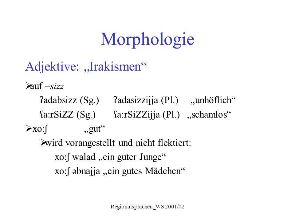 """Regionalsprachen_WS 2001/02 Morphologie Adjektive: """"Irakismen""""  auf –sizz ʔ adabsizz (Sg.) ʔ adasizzijja (Pl.) """"unhöflich"""" ʕ a:rSiZZ (Sg.) ʕ a:rSiZZi"""