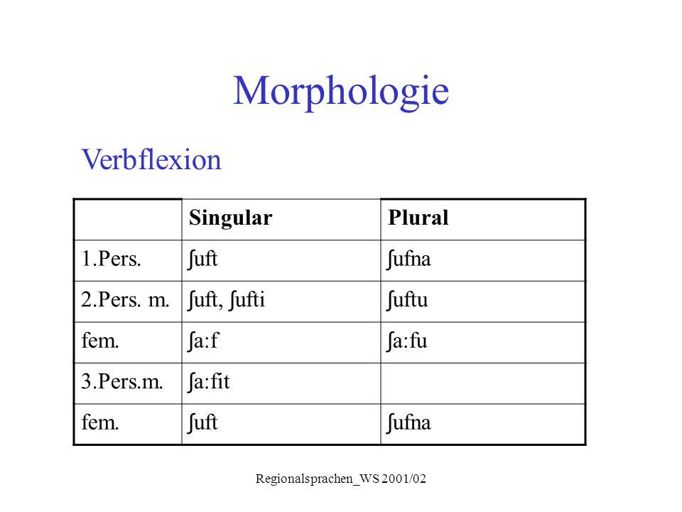 Regionalsprachen_WS 2001/02 Morphologie Verbflexion SingularPlural 1.Pers. ʃ uft ʃ ufna 2.Pers. m. ʃ uft, ʃ ufti ʃ uftu fem. ʃ a:f ʃ a:fu 3.Pers.m. ʃ
