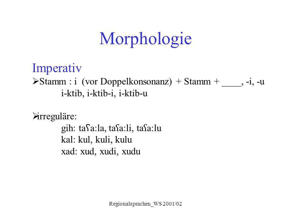Regionalsprachen_WS 2001/02 Morphologie Imperativ  Stamm : i (vor Doppelkonsonanz) + Stamm + ____, -i, -u i-ktib, i-ktib-i, i-ktib-u  irreguläre: gi