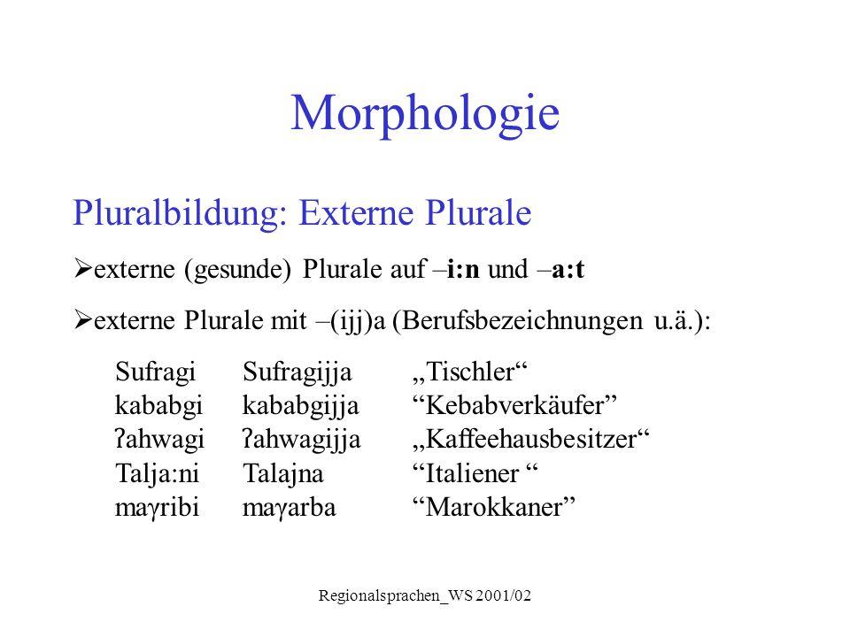 Regionalsprachen_WS 2001/02 Morphologie Pluralbildung: Externe Plurale  externe (gesunde) Plurale auf –i:n und –a:t  externe Plurale mit –(ijj)a (Be