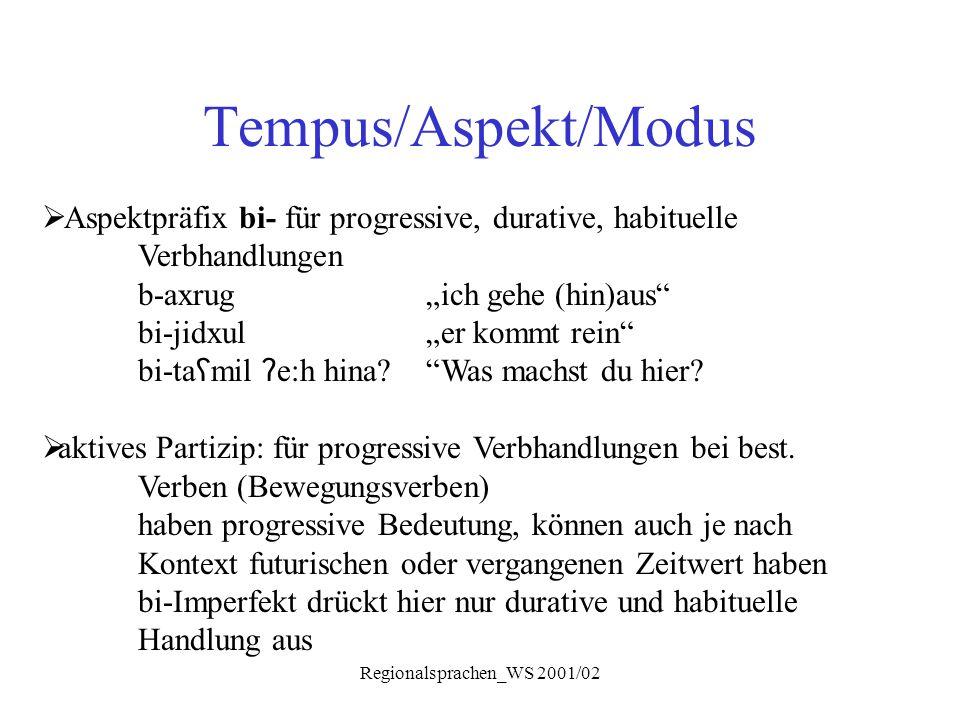"""Regionalsprachen_WS 2001/02 Tempus/Aspekt/Modus  Aspektpräfix bi- für progressive, durative, habituelle Verbhandlungen b-axrug """"ich gehe (hin)aus"""" bi"""
