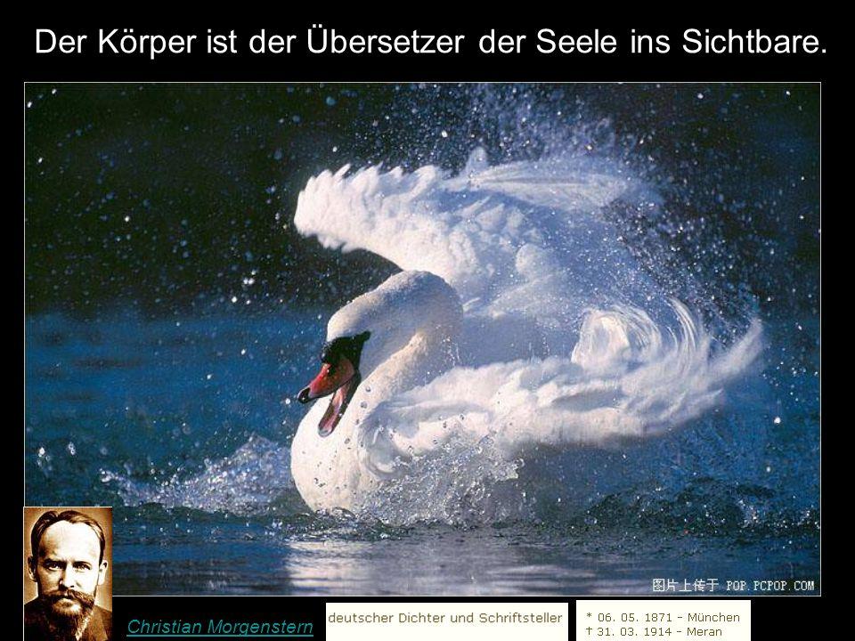 Man kann immer seinen Standpunkt ändern, weil dir niemand verbieten kann, klüger zu werden. Konrad Adenauer