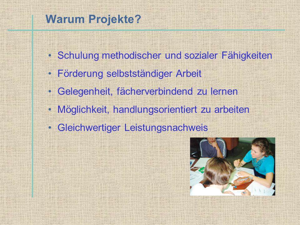 Schulung methodischer und sozialer Fähigkeiten Förderung selbstständiger Arbeit Gelegenheit, fächerverbindend zu lernen Möglichkeit, handlungsorientie
