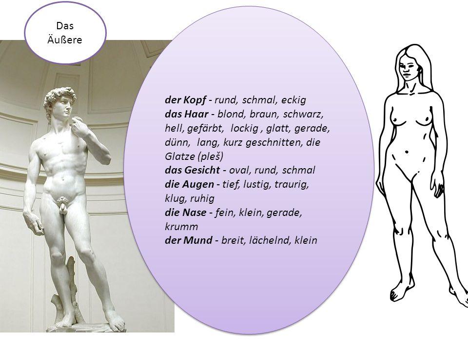 die Figur dünn mager schlank vollschlank korpulent mollig dick fett sportlich kräftig muskulös die Figur dünn mager schlank vollschlank korpulent mollig dick fett sportlich kräftig muskulös Das Äußere