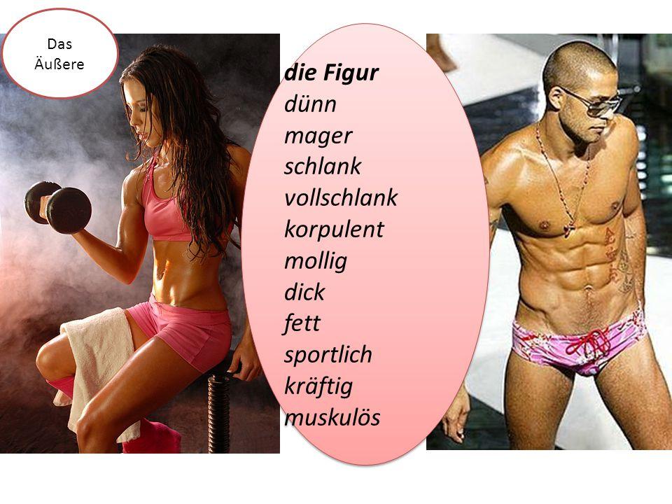 die Figur dünn mager schlank vollschlank korpulent mollig dick fett sportlich kräftig muskulös die Figur dünn mager schlank vollschlank korpulent moll