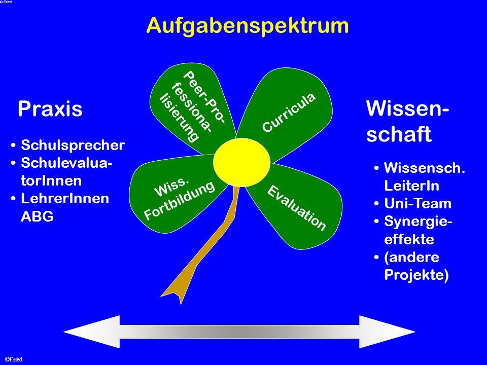 ©Fried Aufgabenspektrum Praxis Wissen- schaft Schulsprecher Schulevalua- torInnen LehrerInnen ABG Wissensch. LeiterIn Uni-Team Synergie- effekte (ande