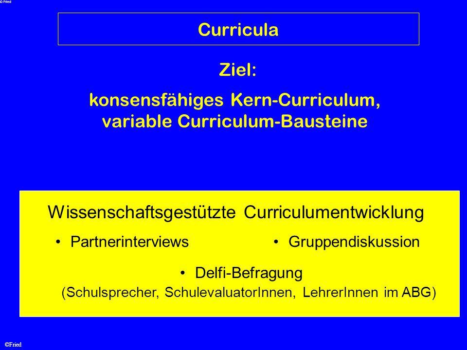 ©Fried Curricula konsensfähiges Kern-Curriculum, variable Curriculum-Bausteine Ziel: Wissenschaftsgestützte Curriculumentwicklung PartnerinterviewsGru