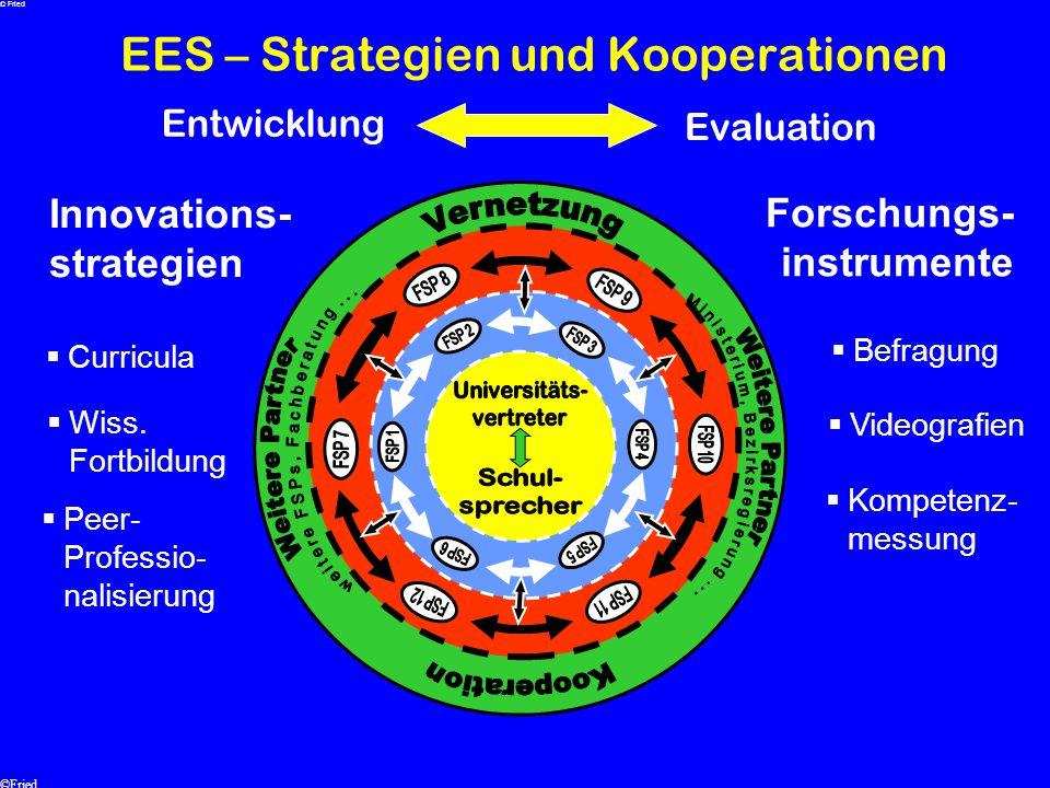 EES – Strategien und Kooperationen Innovations- strategien Forschungs- instrumente  Kompetenz- messung  Curricula  Videografien  Befragung  Peer-