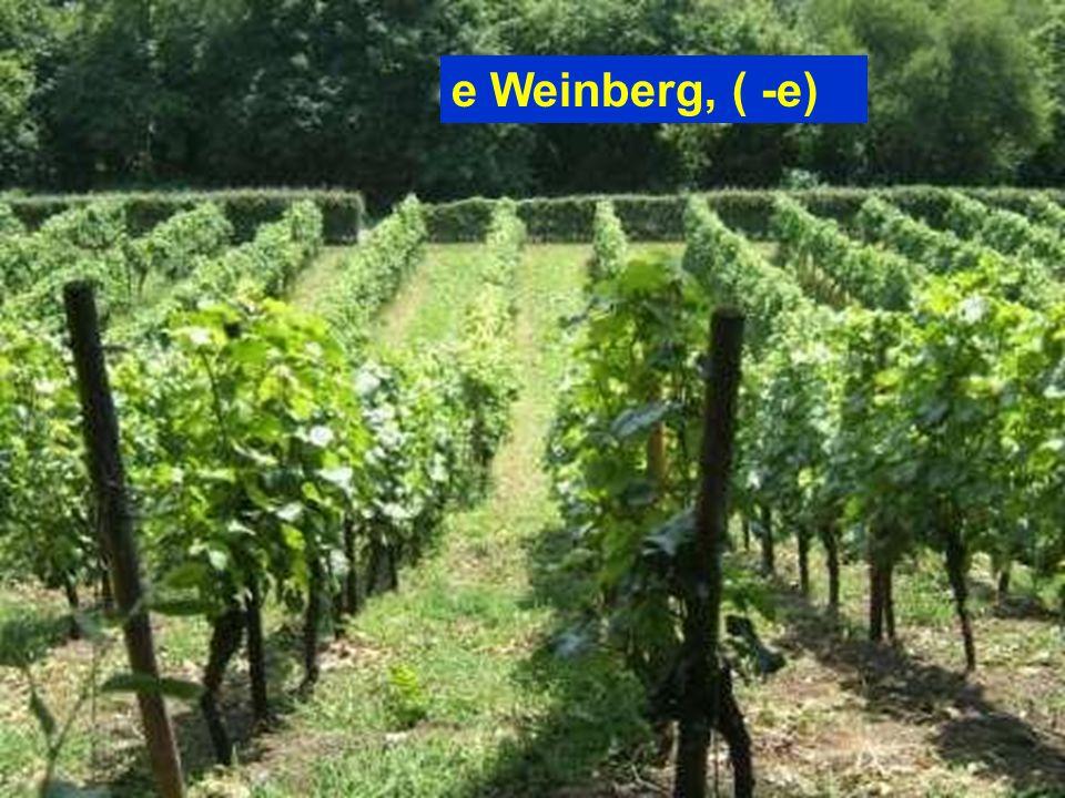 e Weinberg, ( -e)