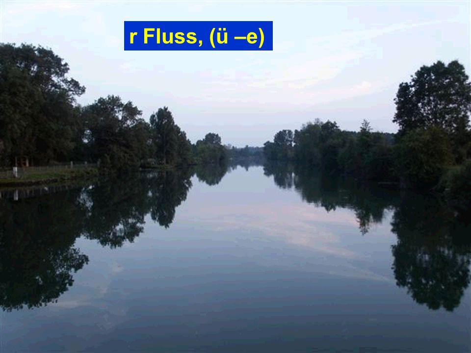 r Fluss, (ü –e)