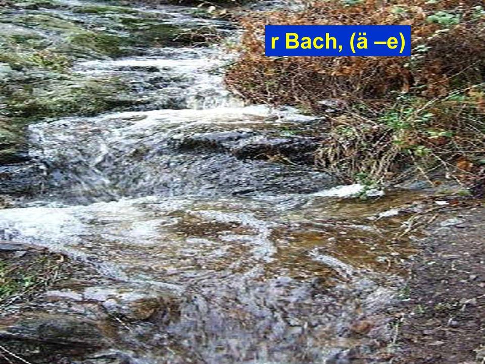 r Bach, (ä –e)