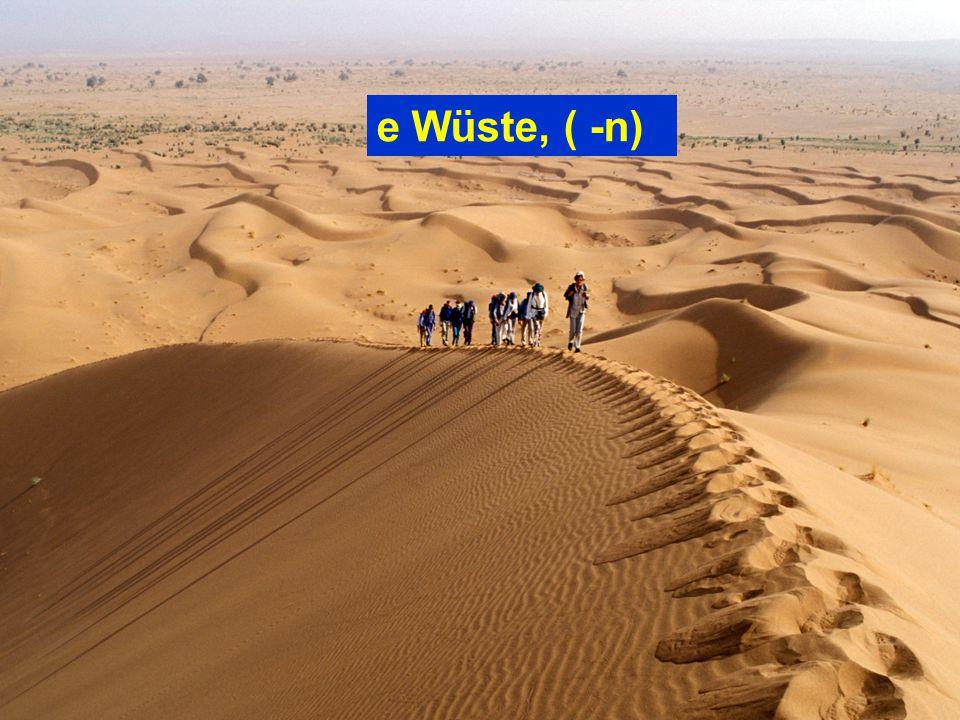 e Wüste, ( -n)