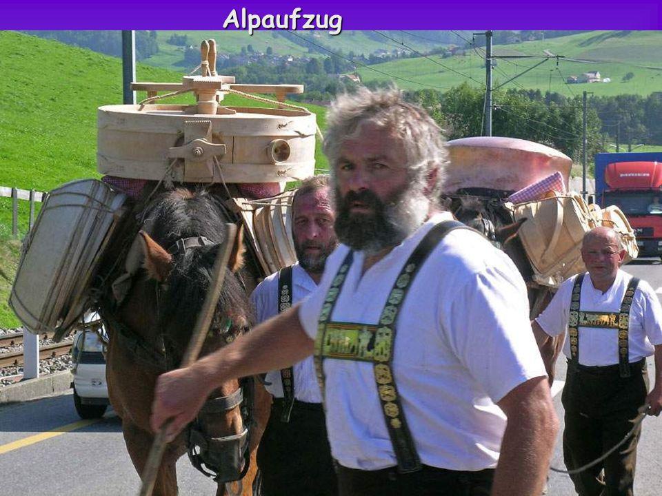 Alpaufzug im Appenzellerland