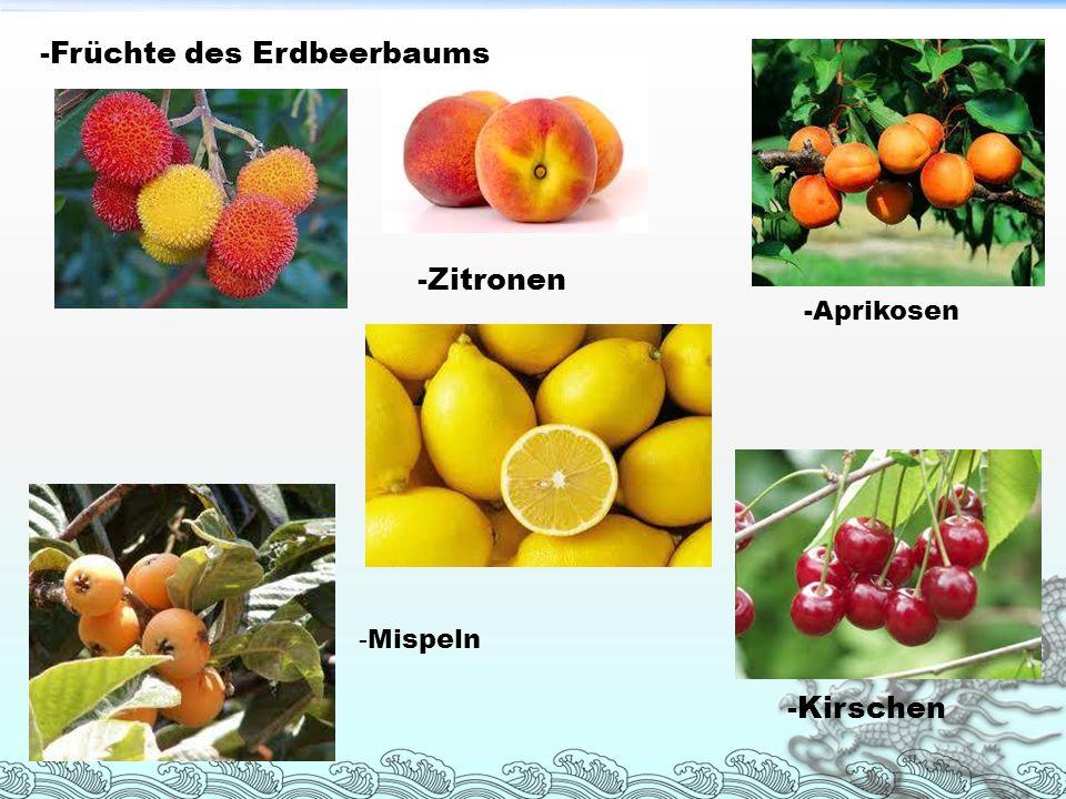 - Mispeln -Kirschen -Früchte des Erdbeerbaums -Zitronen -Aprikosen