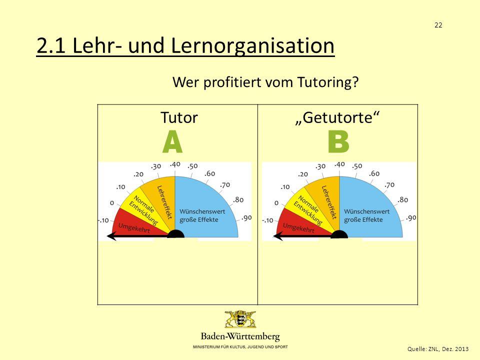 """Tutor""""Getutorte .58.63 Wer profitiert vom Tutoring."""