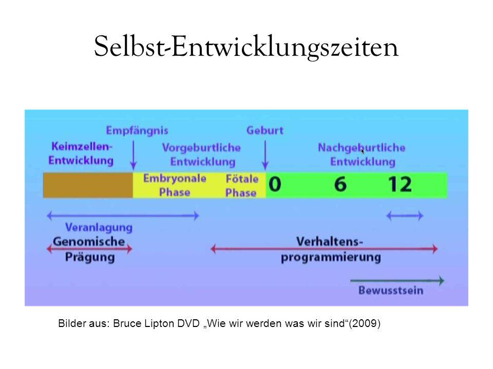 """Selbst-Entwicklungszeiten Bilder aus: Bruce Lipton DVD """"Wie wir werden was wir sind""""(2009)"""