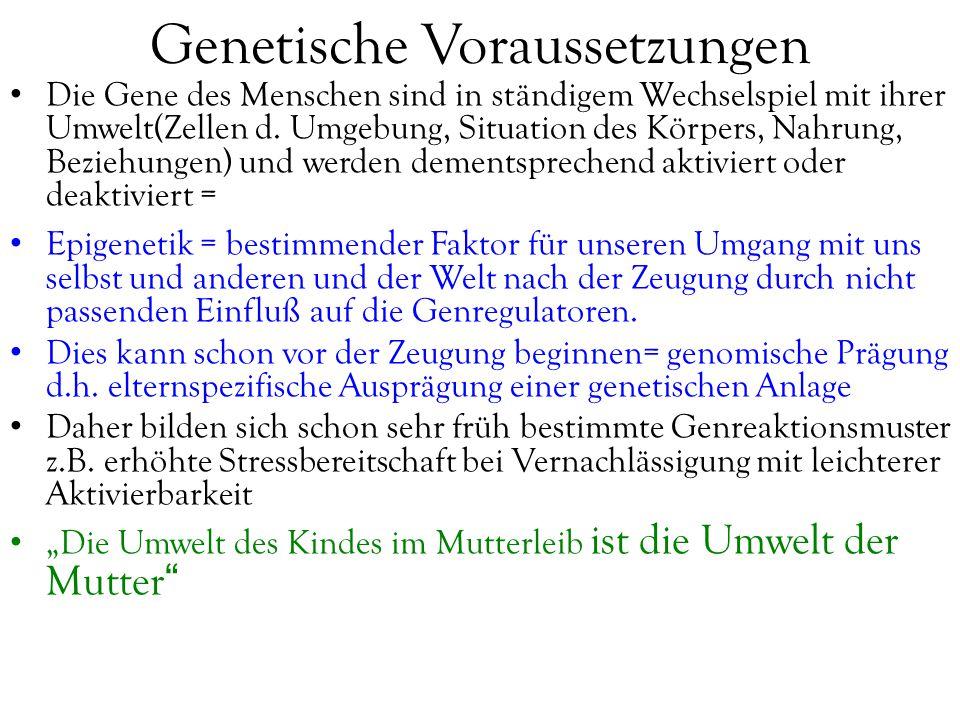 Genetische Voraussetzungen Die Gene des Menschen sind in ständigem Wechselspiel mit ihrer Umwelt(Zellen d. Umgebung, Situation des Körpers, Nahrung, B
