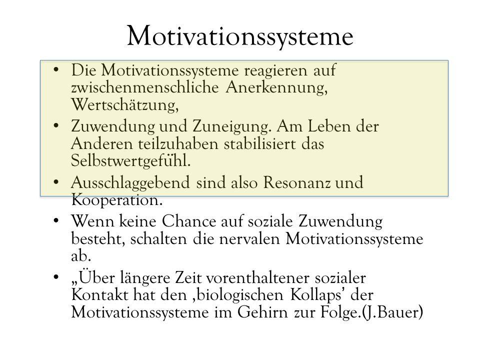 Motivationssysteme Die Motivationssysteme reagieren auf zwischenmenschliche Anerkennung, Wertschätzung, Zuwendung und Zuneigung. Am Leben der Anderen