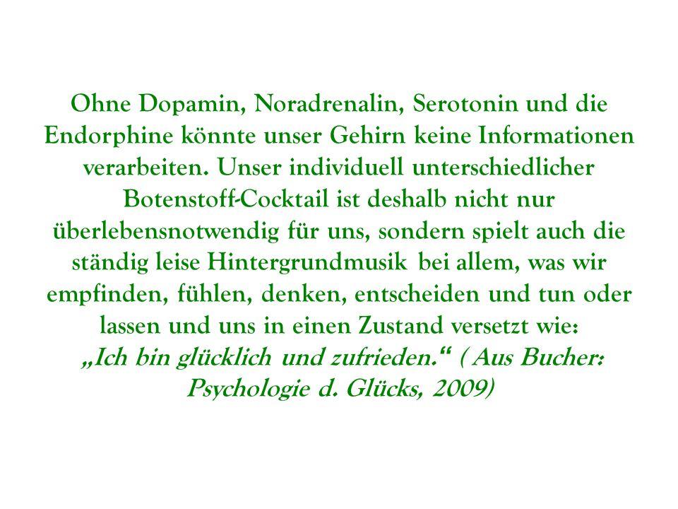 Ohne Dopamin, Noradrenalin, Serotonin und die Endorphine könnte unser Gehirn keine Informationen verarbeiten. Unser individuell unterschiedlicher Bote