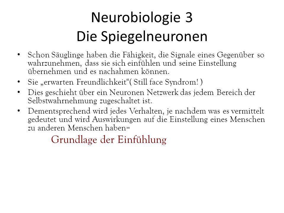 Neurobiologie 3 Die Spiegelneuronen Schon Säuglinge haben die Fähigkeit, die Signale eines Gegenüber so wahrzunehmen, dass sie sich einfühlen und seine Einstellung übernehmen und es nachahmen können.