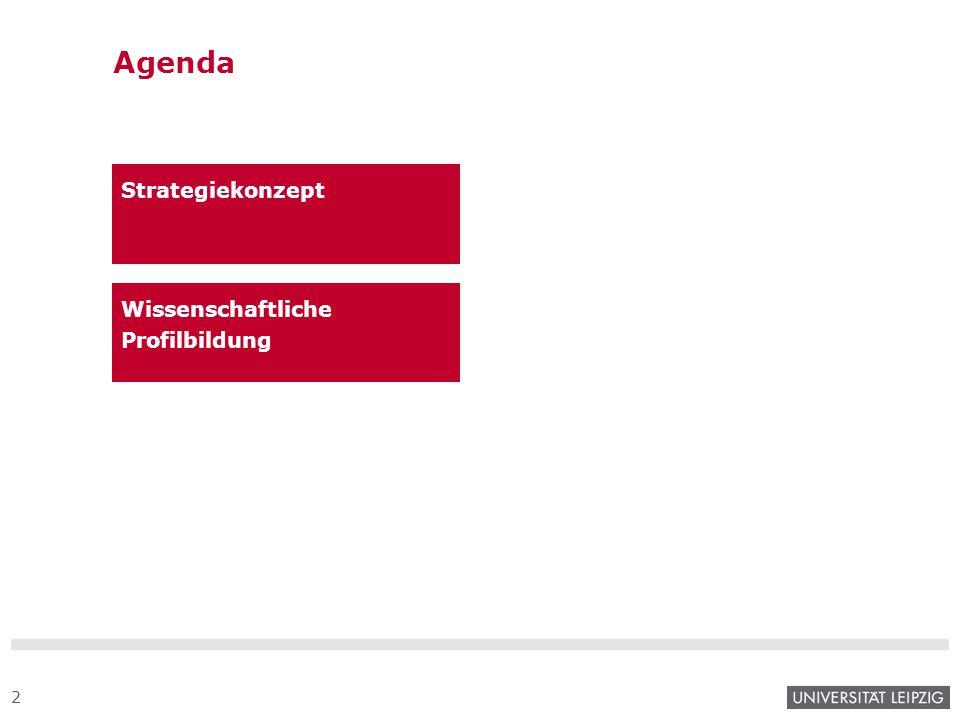 Agenda Strategiekonzept Wissenschaftliche Profilbildung 3