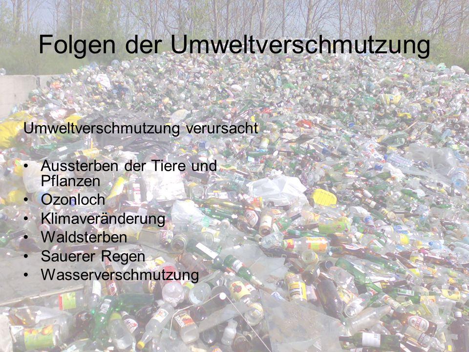 Ursachen der Umweltverschmutzung Das Wasser wird durch die Industrie bedroht Die Luft wird durch den Verkehr verschmutzt Der Erdboden wird durch Müll verschmutzt