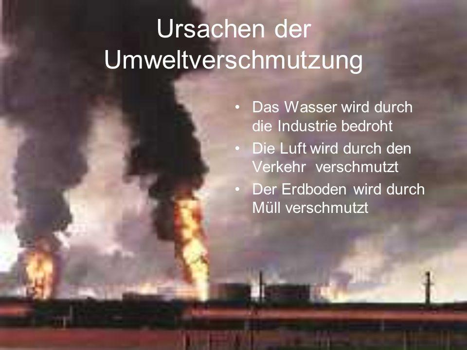 Ursachen der Umweltverschmutzung Das Wasser wird durch die Industrie bedroht Die Luft wird durch den Verkehr verschmutzt Der Erdboden wird durch Müll