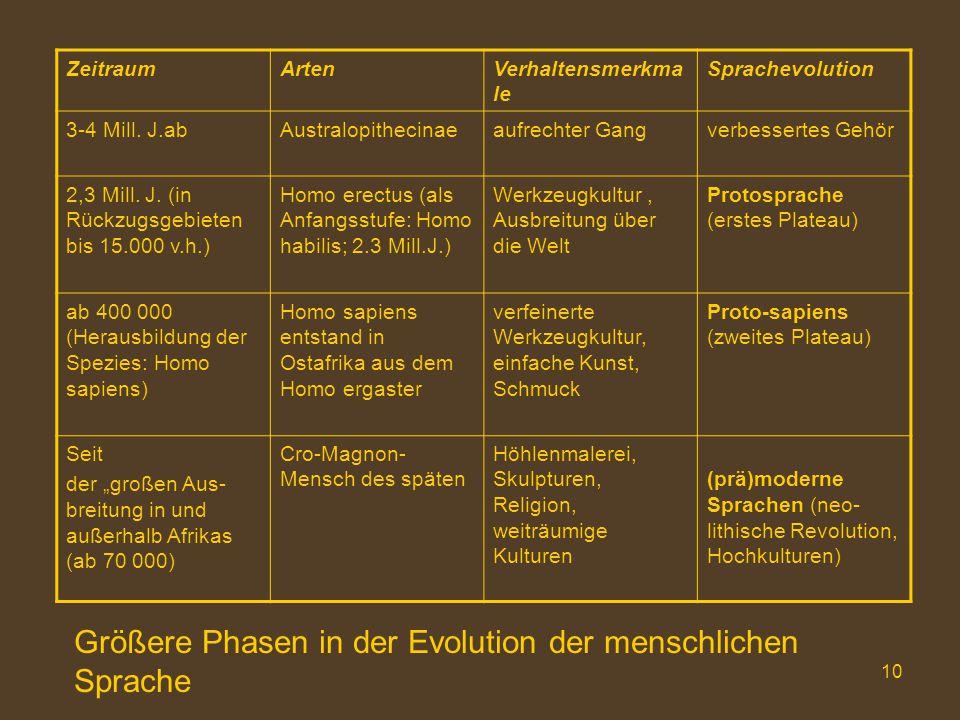 10 ZeitraumArtenVerhaltensmerkma le Sprachevolution 3-4 Mill. J.abAustralopithecinaeaufrechter Gangverbessertes Gehör 2,3 Mill. J. (in Rückzugsgebiete