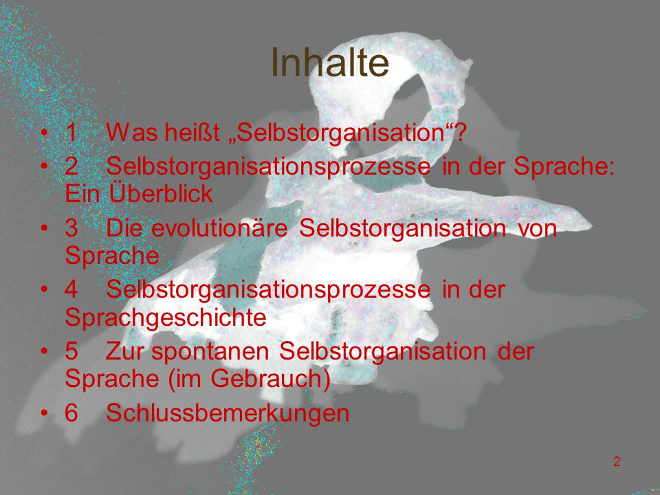 """23 """"Fortschritte in der Sprachgeschichte."""
