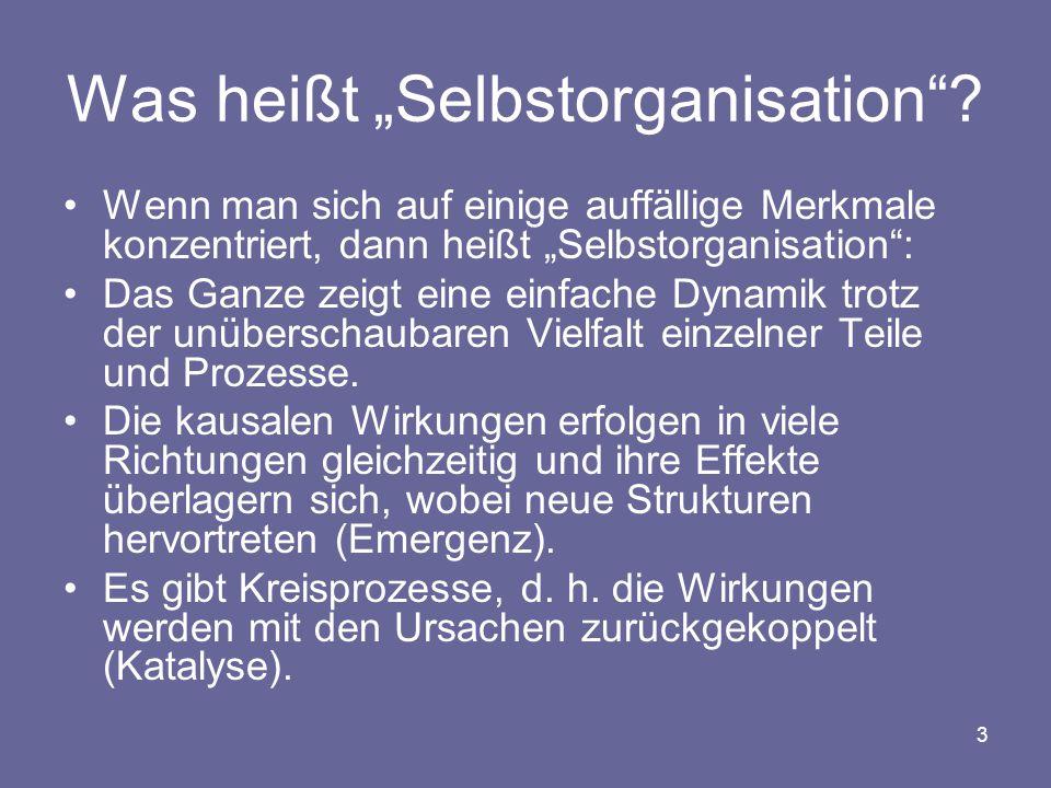 """3 Was heißt """"Selbstorganisation""""? Wenn man sich auf einige auffällige Merkmale konzentriert, dann heißt """"Selbstorganisation"""": Das Ganze zeigt eine ein"""