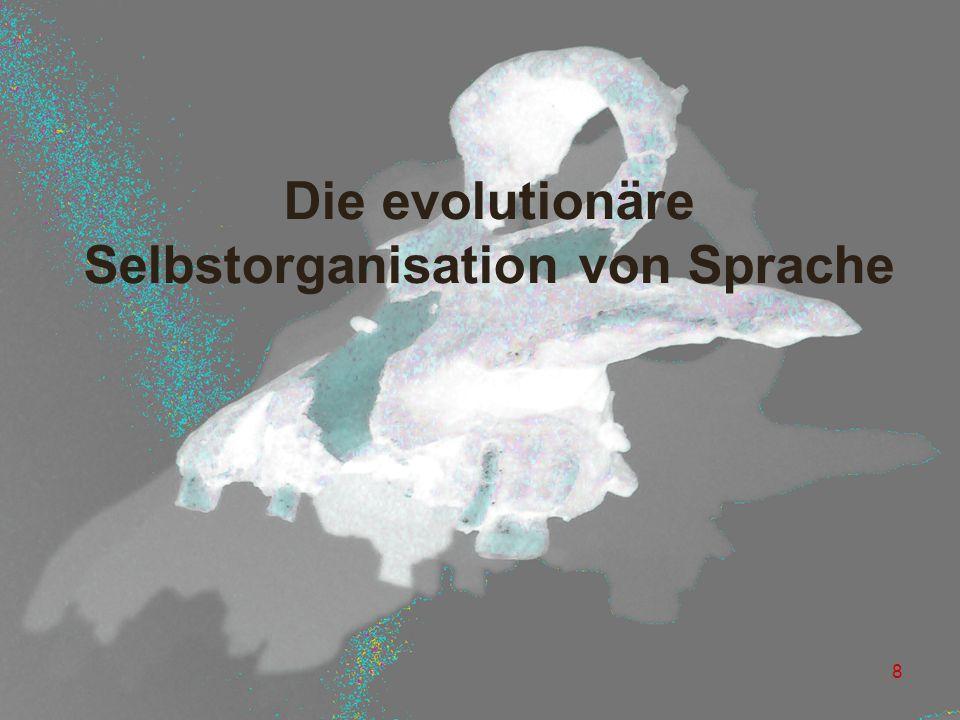 8 Die evolutionäre Selbstorganisation von Sprache