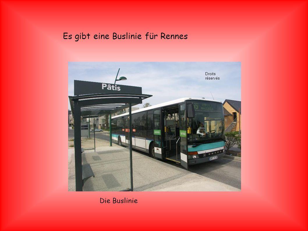 Es gibt eine Buslinie für Rennes Die Buslinie Droits réservés