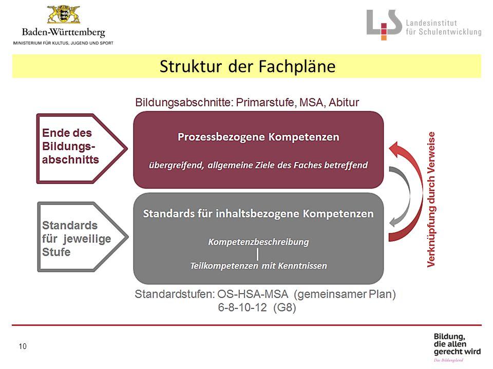 Struktur der Fachpläne 10