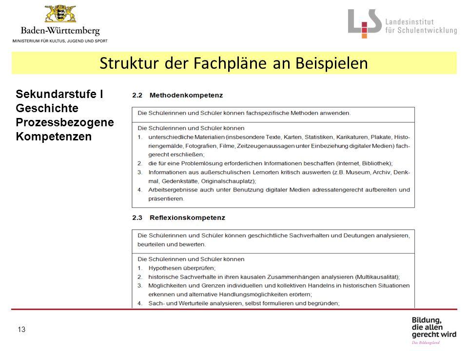 Struktur der Fachpläne an Beispielen Sekundarstufe I Geschichte Prozessbezogene Kompetenzen 13