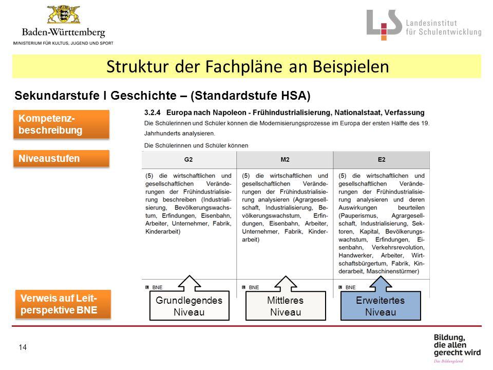 Struktur der Fachpläne an Beispielen Kompetenz- beschreibung Niveaustufen Verweis auf Leit- perspektive BNE Sekundarstufe I Geschichte – (Standardstuf