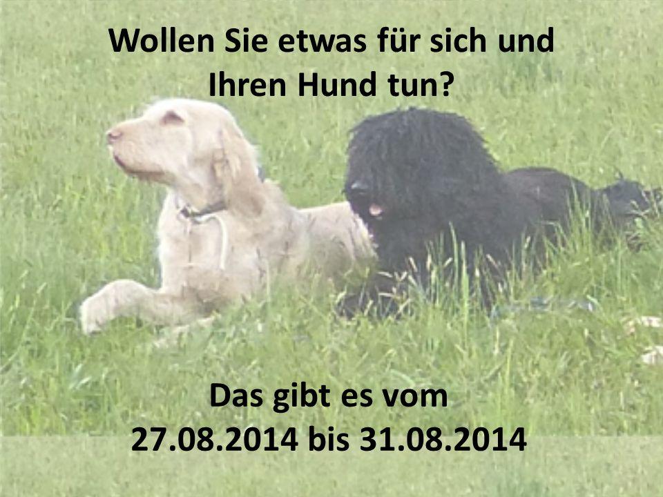 KINDERPROGRAMM ZUSATZPROGRAMM Kinderprogramm mit und ohne Hund Führung durch den abendlichen Wildpark Altenfelden Pferdekutschenfahrten mit dem Hund Kladrubazentrum Altenfelden