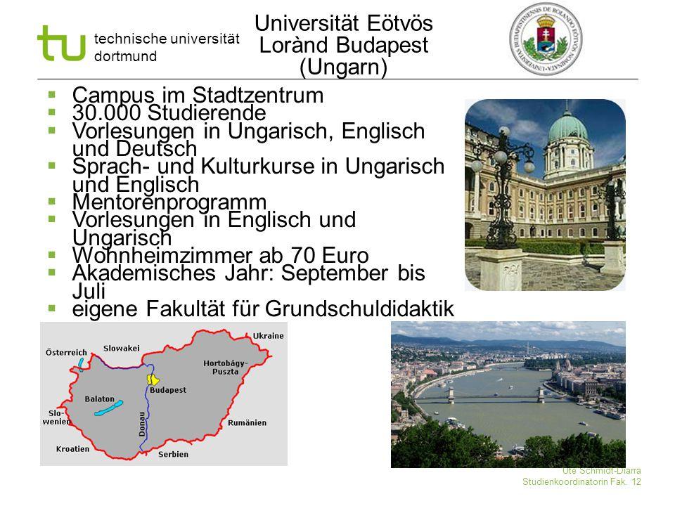 technische universität dortmund Ute Schmidt-Diarra Studienkoordinatorin Fak. 12  Campus im Stadtzentrum  30.000 Studierende  Vorlesungen in Ungaris