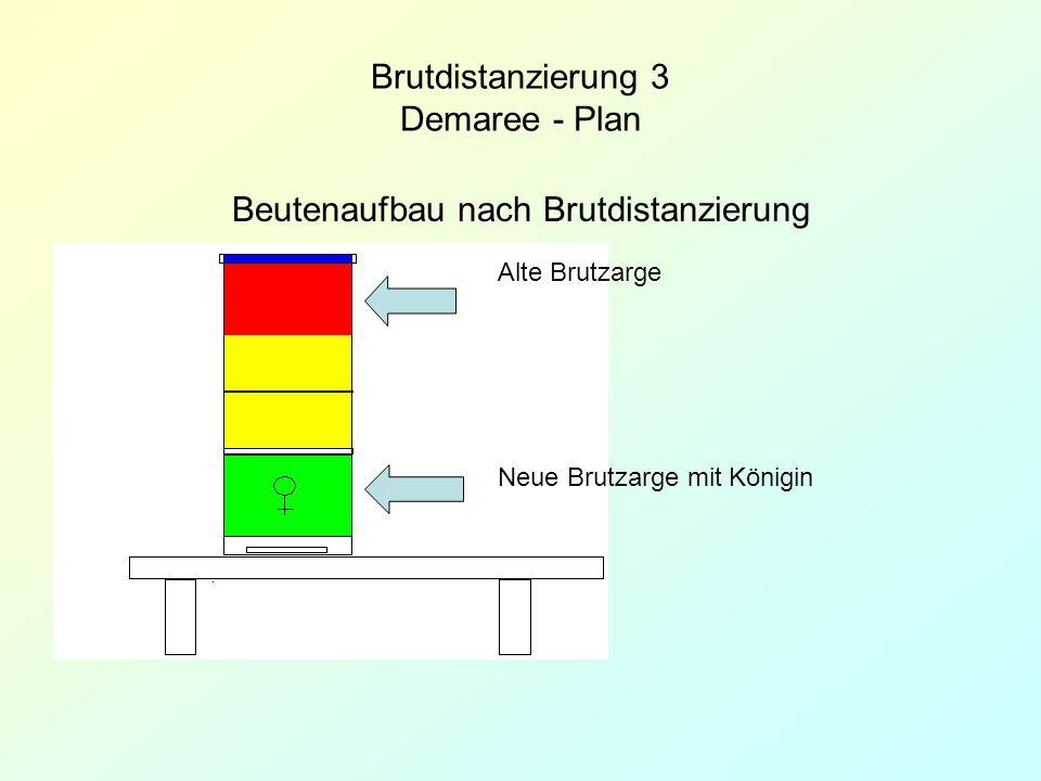 Brutdistanzierung 3 Demaree - Plan Beutenaufbau nach Brutdistanzierung Alte Brutzarge Neue Brutzarge mit Königin