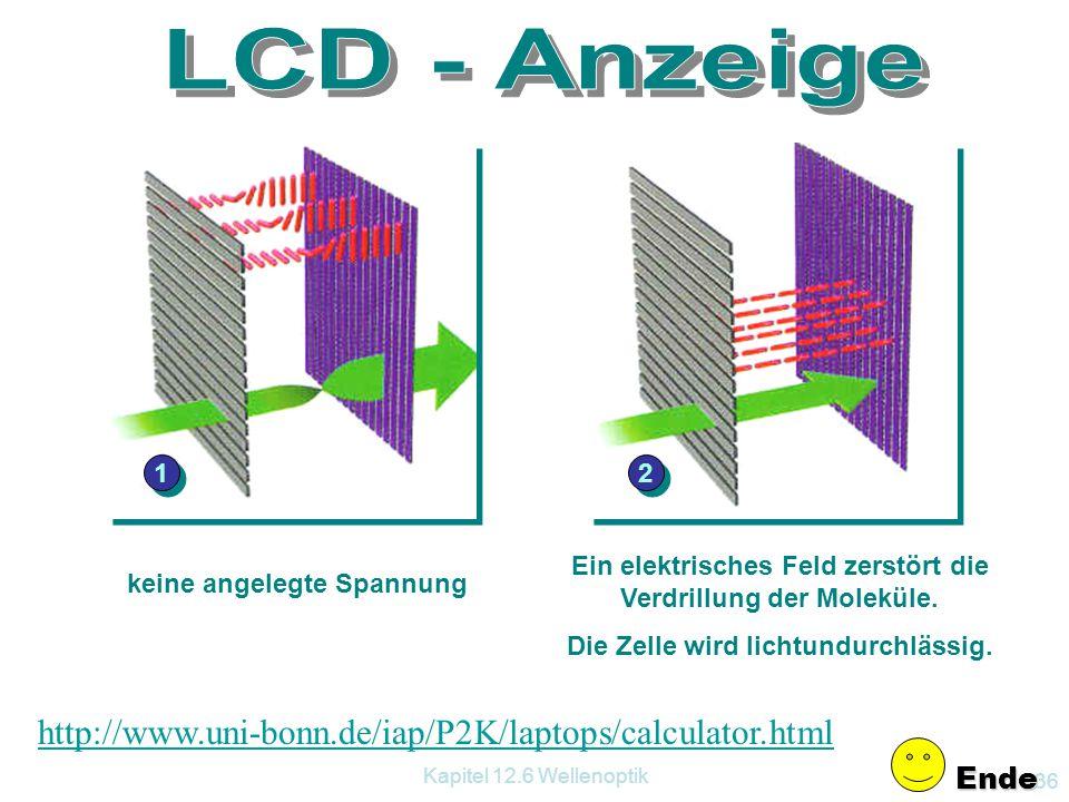 Kapitel 12.6 Wellenoptik 35 12.6.3.6 Der Faradayeffekt Wird zwischen zwei gekreuzte Polfilter ein Glasstab, der in die Polschuhe eines Elektromagneten