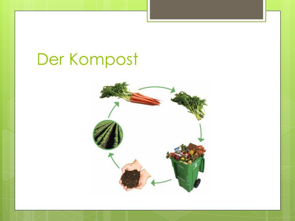Der Kompost