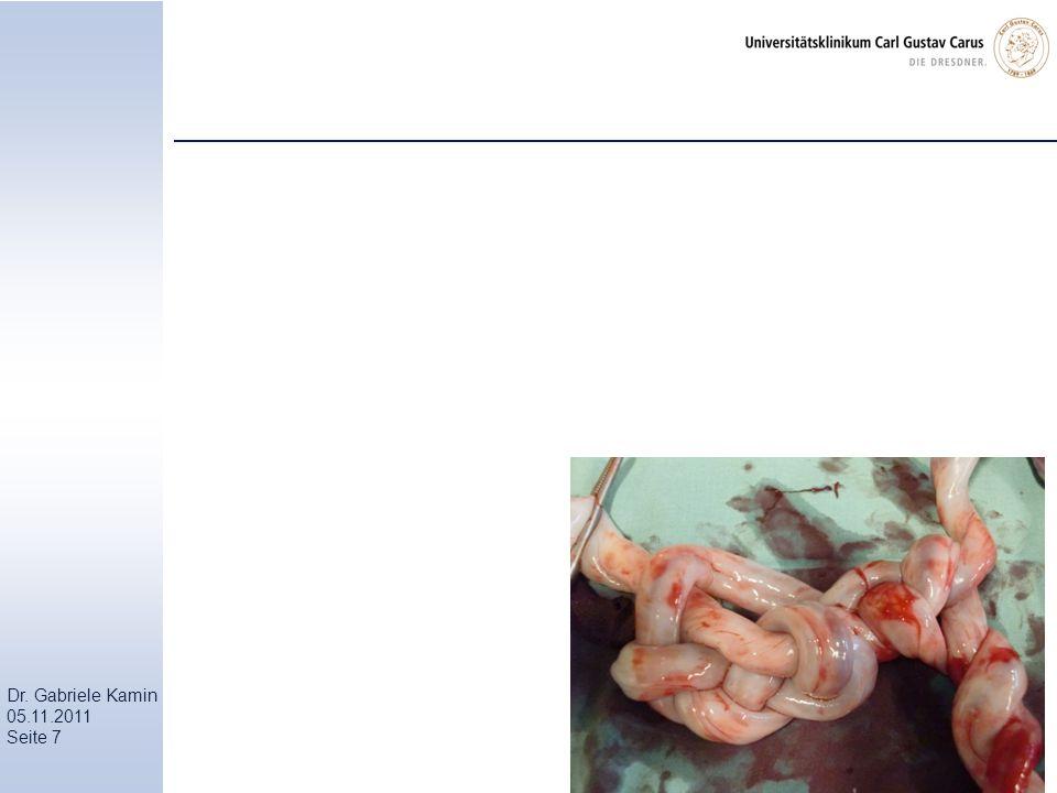 Dr. Gabriele Kamin 05.11.2011 Seite 7