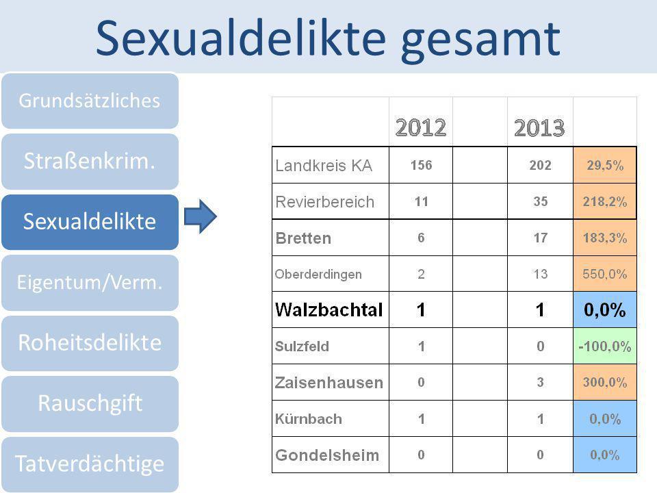 Sexualdelikte gesamt Grundsätzliches Straßenkrim.Sexualdelikte Eigentum/Verm. RoheitsdelikteRauschgiftTatverdächtige