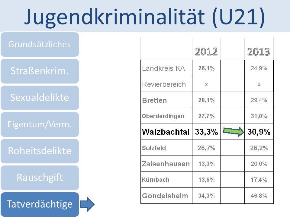 Jugendkriminalität (U21) Grundsätzliches Straßenkrim.Sexualdelikte Eigentum/Verm. RoheitsdelikteRauschgiftTatverdächtige