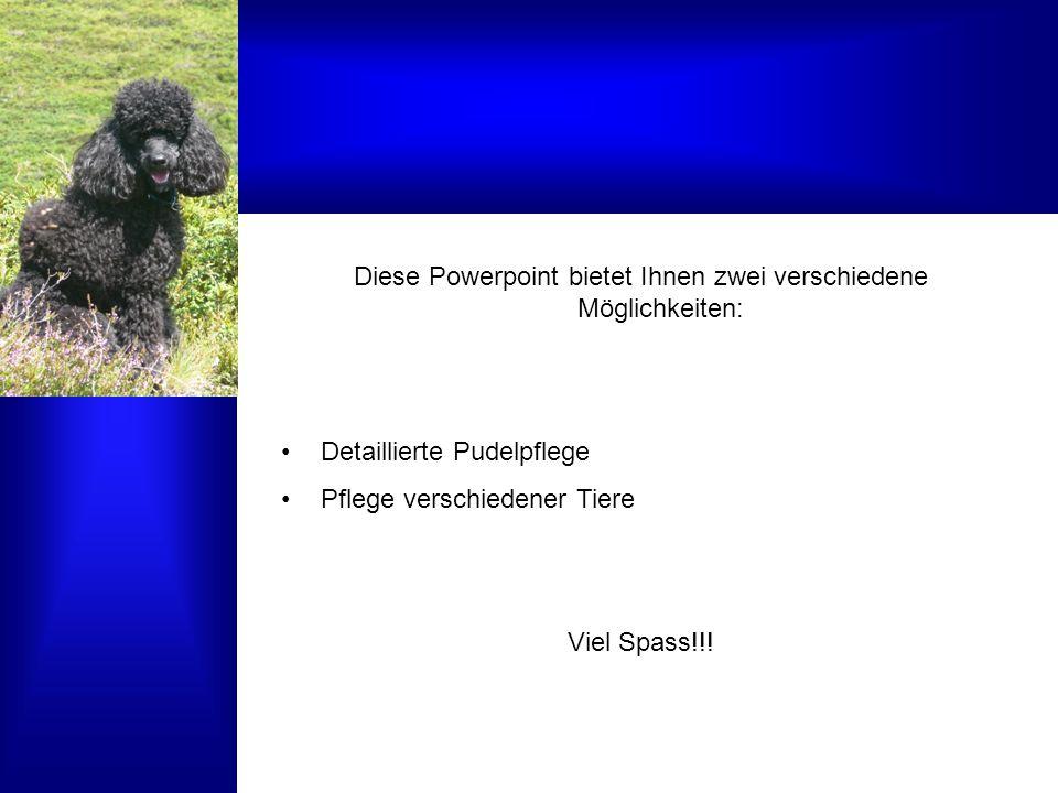 Diese Powerpoint bietet Ihnen zwei verschiedene Möglichkeiten: Detaillierte Pudelpflege Pflege verschiedener Tiere Viel Spass!!!